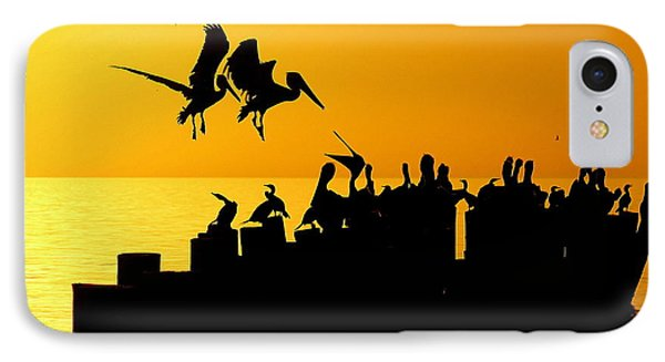 Landing In The Sunset IPhone Case