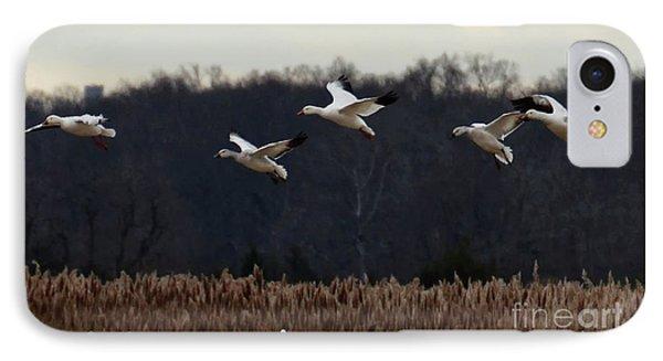 Landing IPhone Case by Tamera James