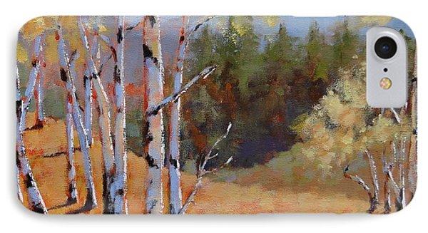 Landscape Series 1 IPhone Case by Laura Lee Zanghetti