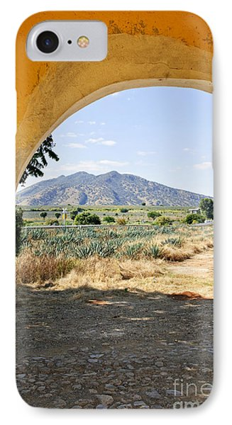 Landscape With Agave Cactus Field In Mexico IPhone Case by Elena Elisseeva
