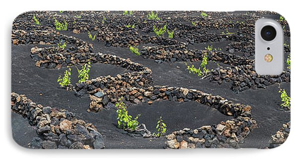 Lanzarote Vineyards IPhone Case by Delphimages Photo Creations