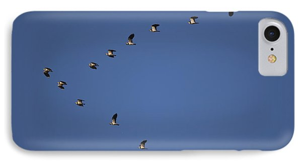 Lapwing Flock IPhone 7 Case by Per-Olov Eriksson