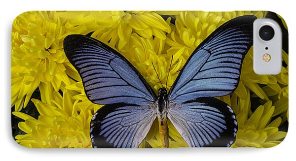 Large Blue Butterfly On Mums IPhone Case by Garry Gay