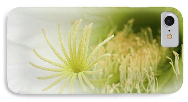 Large Delicate White Cactus Flower IPhone Case