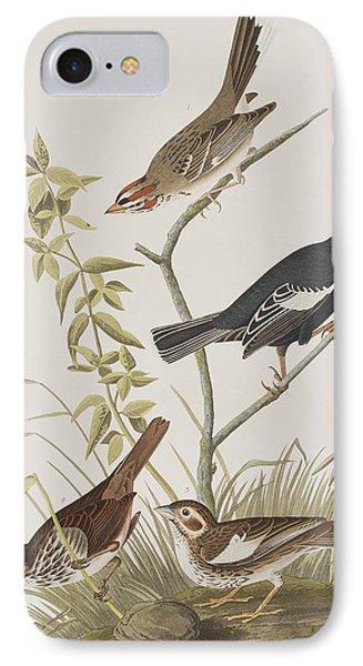 Lark Finch Prairie Finch Brown Song Sparrow IPhone 7 Case by John James Audubon