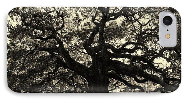 Last Angel Oak 72 IPhone Case
