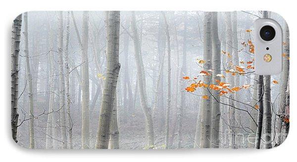 Last Autumn Branch IPhone Case by Svetlana Sewell