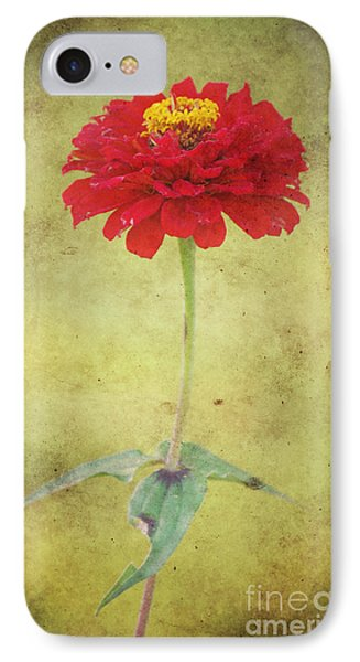 Last Days Of Summer Phone Case by Angela Doelling AD DESIGN Photo and PhotoArt