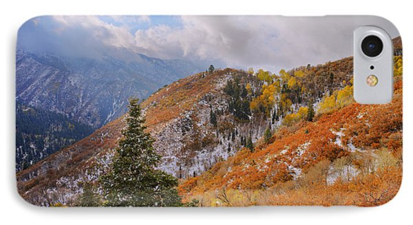 Last Fall IPhone Case by Chad Dutson