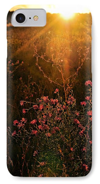 IPhone Case featuring the photograph Last Glimpse Of Light by Jan Amiss Photography