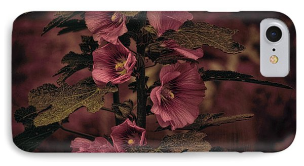 IPhone Case featuring the photograph Last Hollyhock Blooms by Douglas MooreZart