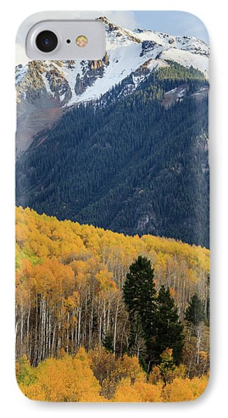 IPhone Case featuring the photograph Last Light Of Autumn Vertical by David Chandler