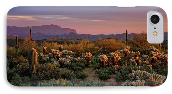 IPhone Case featuring the photograph Last Light On The Sonoran  by Saija Lehtonen