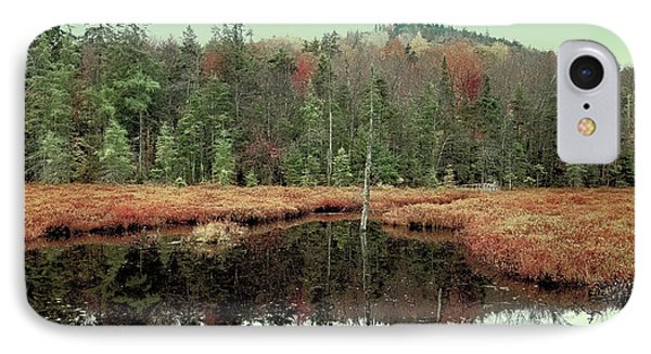 IPhone 7 Case featuring the photograph Last Of Autumn On Fly Pond by David Patterson