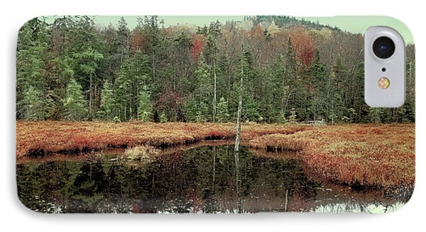 IPhone Case featuring the photograph Last Of Autumn On Fly Pond by David Patterson