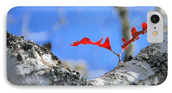 IPhone Case featuring the photograph Last To Leaf by Debbie Karnes
