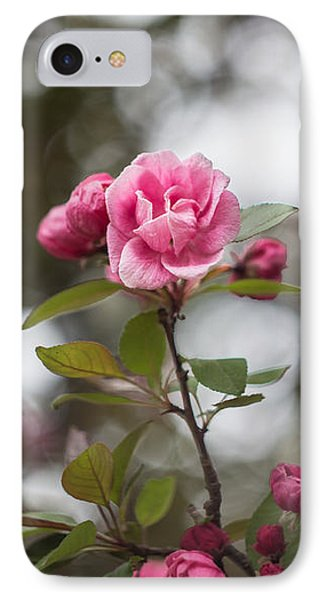Late May 8 Crab Apple Blossoms IPhone Case