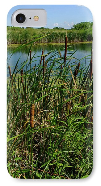 Late Summer Cattails IPhone Case by Scott Kingery
