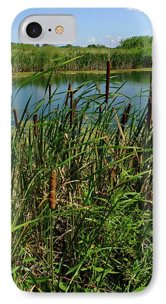 IPhone Case featuring the photograph Late Summer Cattails by Scott Kingery