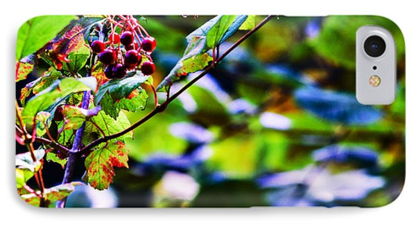 IPhone Case featuring the photograph Late Summer Rain by Edward Peterson