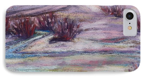 Late Winter Light IPhone Case by Becky Chappell