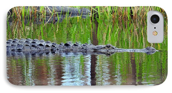 IPhone Case featuring the photograph Later Gator by Al Powell Photography USA