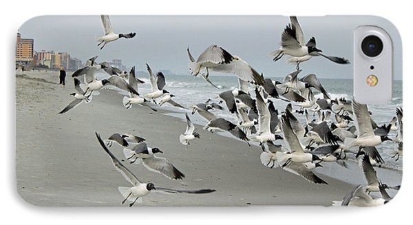Laughing Gulls II IPhone Case by Suzanne Gaff