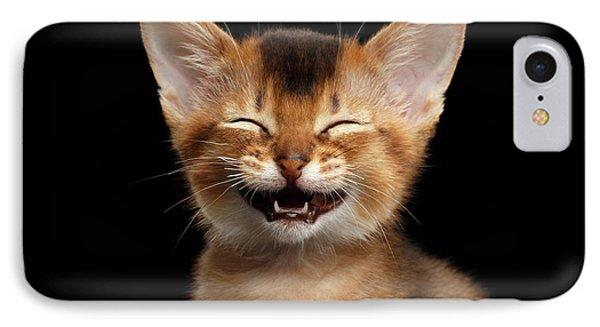 Laughing Kitten  IPhone Case by Sergey Taran