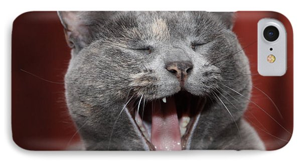 Laughing Kitty IPhone Case