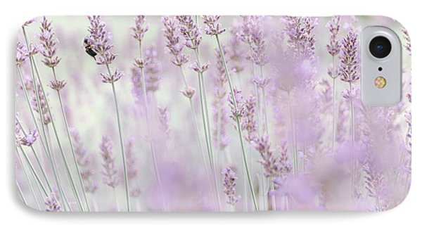 IPhone Case featuring the photograph Lavender 6 by Andrea Anderegg