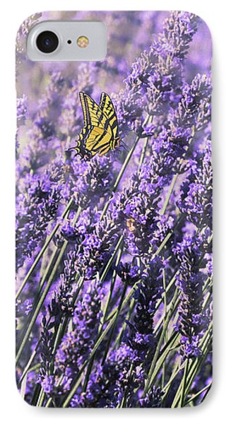 Lavender And Tiger Swallowtail In The Morning Light IPhone Case by Diane Schuster