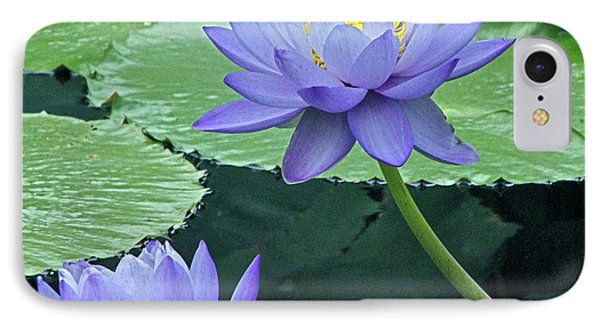 IPhone Case featuring the photograph Lavender Enchantment by Byron Varvarigos