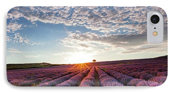 Lavender Phone Case by Evgeni Dinev