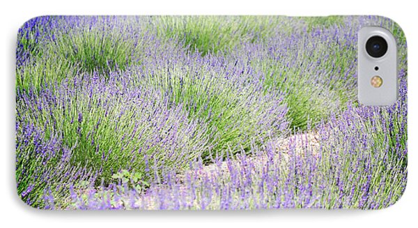 Lavender Field Farm Landscape IPhone Case by Andrea Hazel Ihlefeld