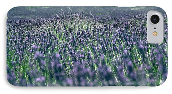 Lavender IPhone Case by Flavia Westerwelle