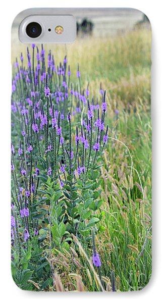 Lavender Hills IPhone Case