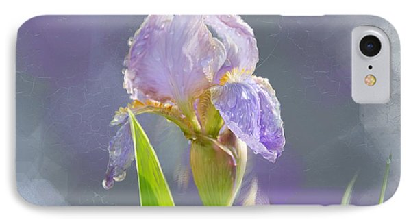 Lavender Iris In The Morning Sun IPhone Case by Debra Baldwin