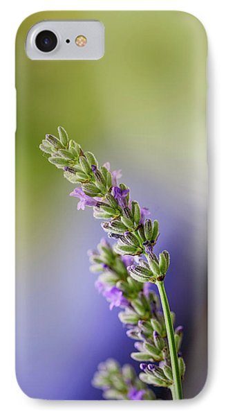 Honeybee iPhone 7 Case - Lavender by Nailia Schwarz