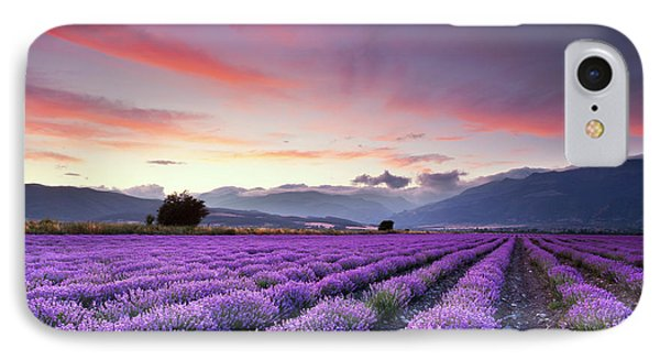 Landscapes iPhone 7 Case - Lavender Season by Evgeni Dinev