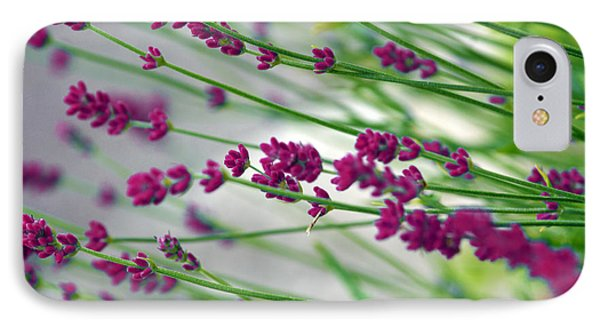 IPhone Case featuring the photograph Lavender by Susanne Van Hulst