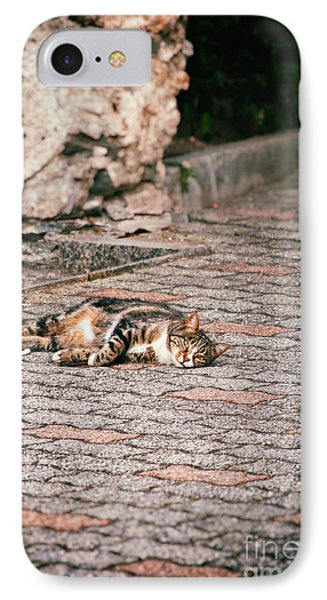 IPhone 7 Case featuring the photograph Lazy Cat    by Silvia Ganora