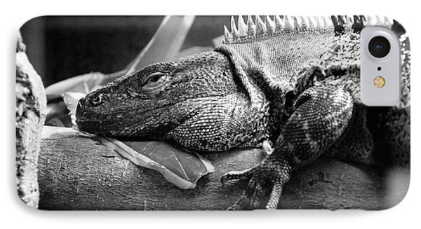 Lazy Lizard IPhone Case