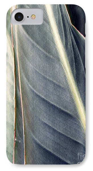 Leaf Abstract 14 IPhone Case by Sarah Loft