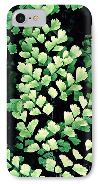 Leaf Abstract 15 IPhone Case by Sarah Loft