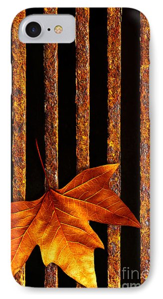 Leaf In Drain IPhone Case by Carlos Caetano