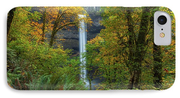 Leaf Peeping And Waterfall Phone Case by David Gn