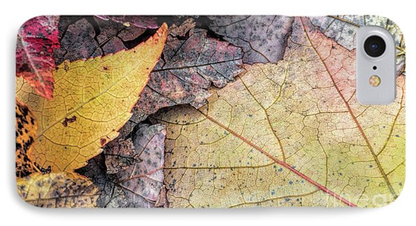 Leaf Pile Up IPhone Case by Todd Breitling