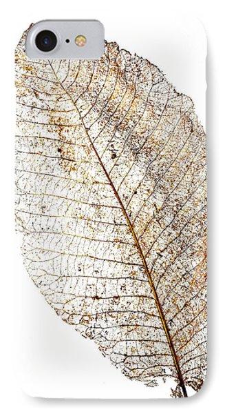 Leaf Skeleton IPhone Case by Garry Gay