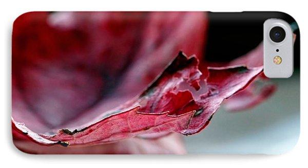 Leaf Study II IPhone Case by Lauren Radke