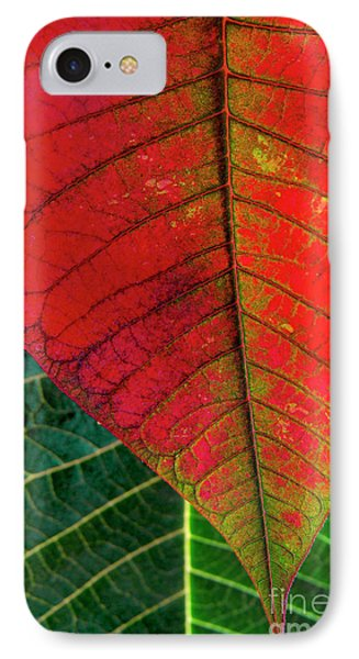 Leafs Macro IPhone Case by Carlos Caetano